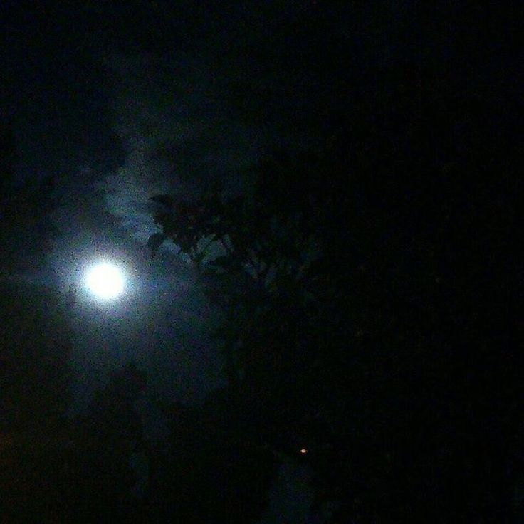 """""""Minden ember hold: megvan a sötét oldala, amit sose mutat meg senkinek."""" - Mark…"""
