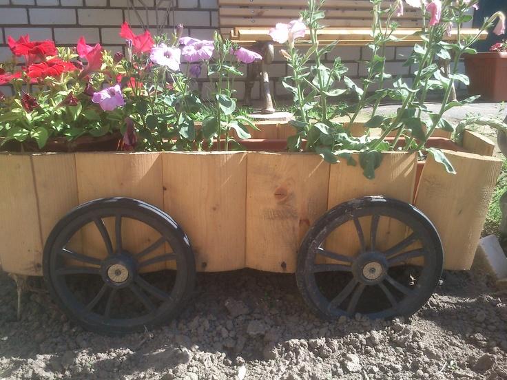 gardening ideasGardens Ideas, Gardening