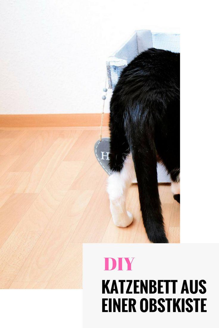 so einfach baut man ein katzenbett fr seine lieblinge aus einer obstkiste diy holz - Einfache Dekoration Und Mobel Samtpfoten Fuer Die Moebel