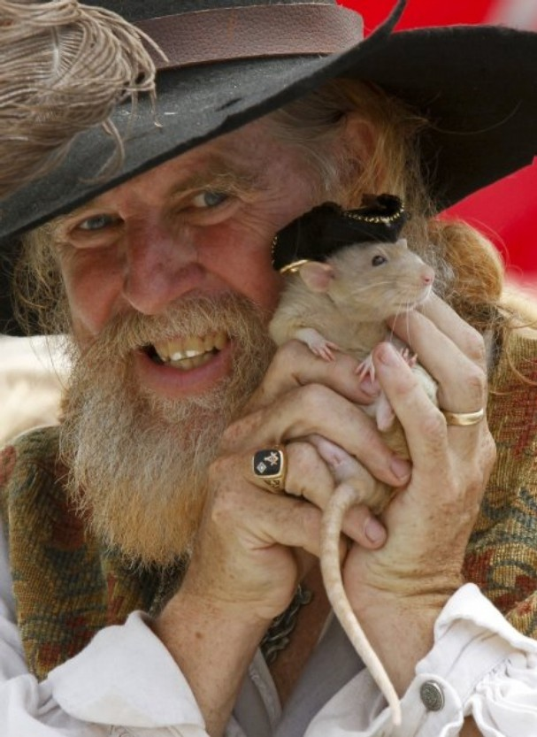 """RAT PIRATE: Michael Macleod poses for spectators with his pet rat, Long John Silver, during the Pirate Days event at Ventura Harbor on Saturday afternoon. The theme is """"Seek Ye Treasure,"""" and organizers promised pirate costume contests, shows, boat tours, demonstrations and fun for kids. The festival continues from 1 to 4 p.m.Sunday."""