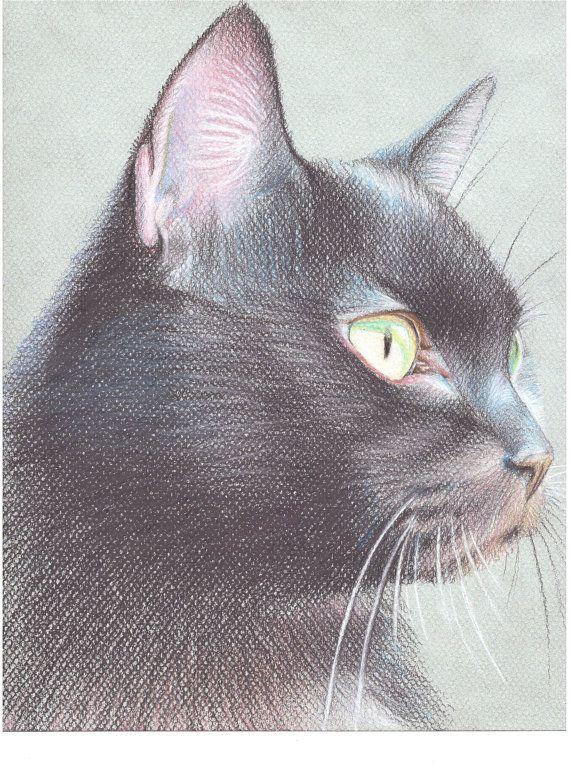 Портреты домашних животных от Handdrawnportrait на Etsy, $100.00