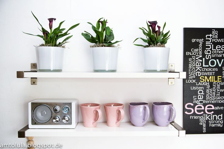 die besten 25 calla pflanze ideen auf pinterest calla lilien calla lilien blumenstrau und. Black Bedroom Furniture Sets. Home Design Ideas