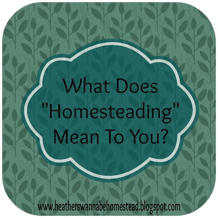 "Heather's Wannabe Homestead: What does ""Homesteading"" mean to you?"