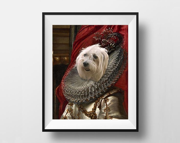 Marquise Doria - Royal Pet Portrait - Instant Download Printable - Digital File by dasfolDesign on Etsy