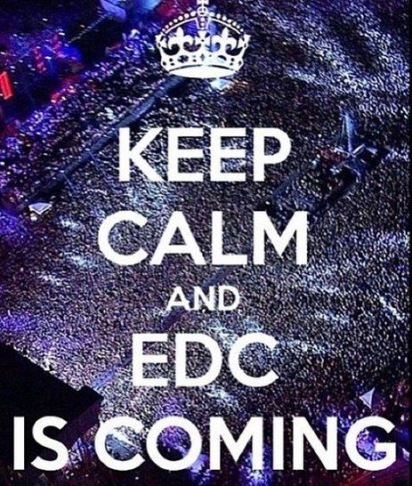 Who is headed to EDC Orlando?  #edmfamily #festivalgear