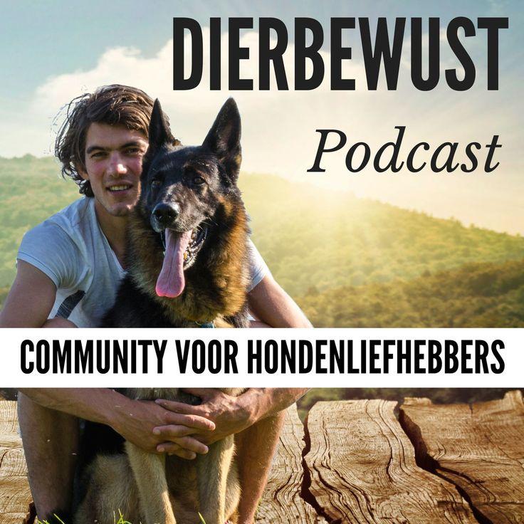 Hondenliefhebbers dating advice