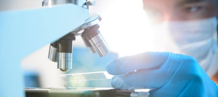 Internal Medicine Doctors Treat Diverse Health Problems