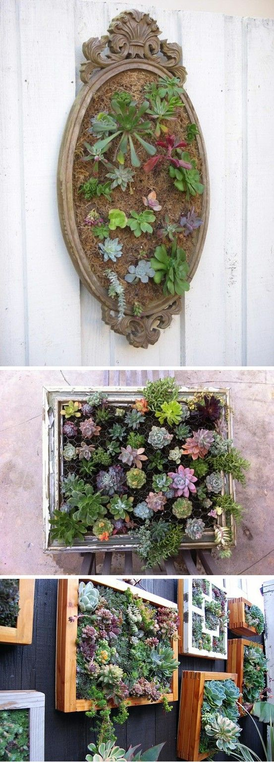 DIY: Vertical Garden - Click image to find more hot Pinterest pins