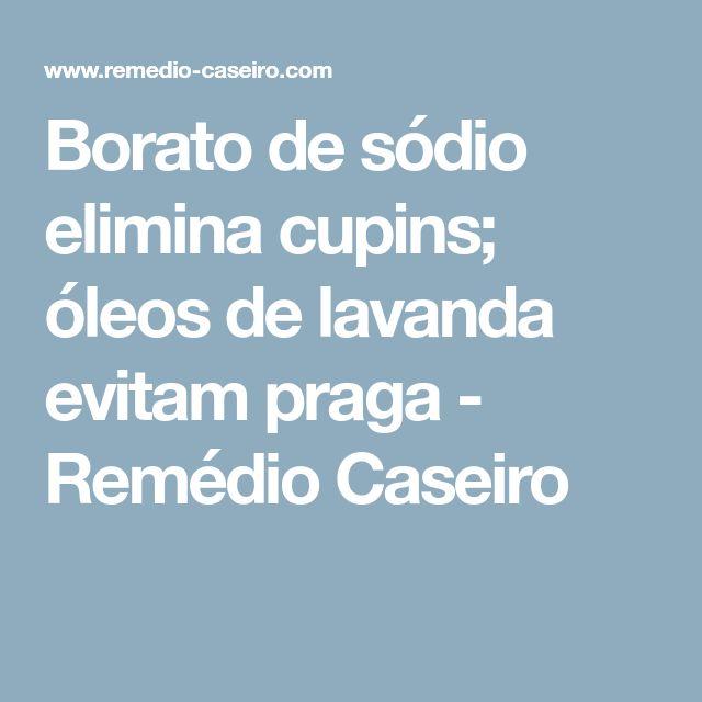 Borato de sódio elimina cupins; óleos de lavanda evitam praga - Remédio Caseiro
