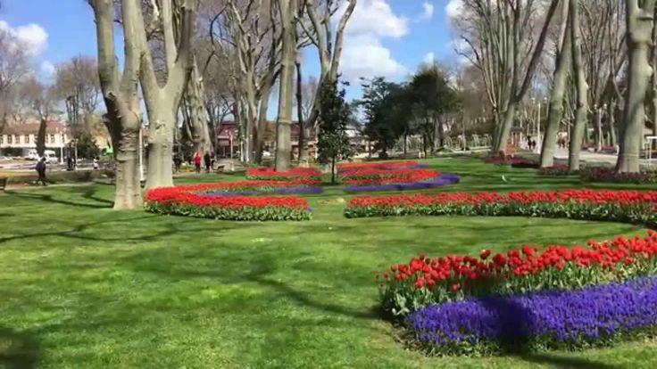 Turkey Home Of Tulips