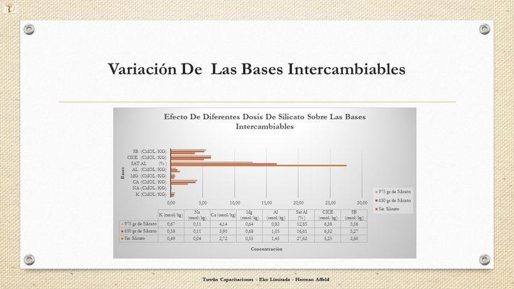 Efecto de los Silicatos sobre las Bases Intercambiables en un suelo Ultisol