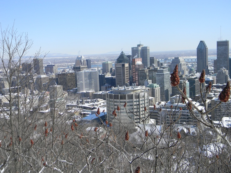 snow-dusted Montreal from Mont Royal..where I lived for 3 years