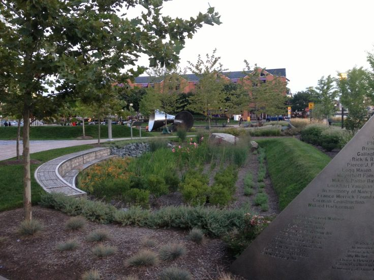 1000 images about storm water on pinterest rain garden water