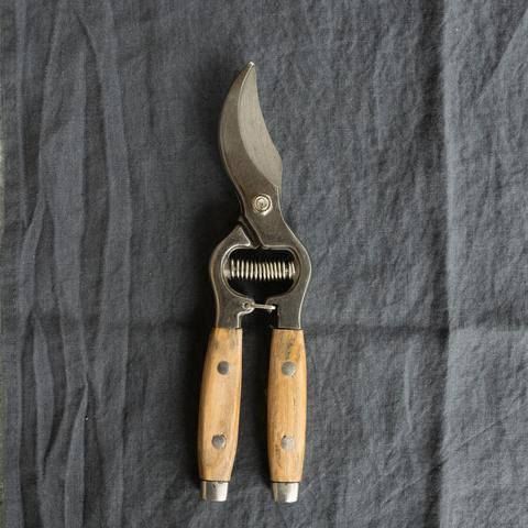 Secateurs, stainless steel blade and ash handle