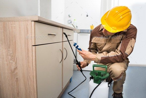 Feel free to Schedule a Complimentary inspection for your Residential or Commercial property and get rid from unwanted pests for good. Click the link for advanced pest control services.    #advancedpestcontrol #getitnow #pestcontrolservices