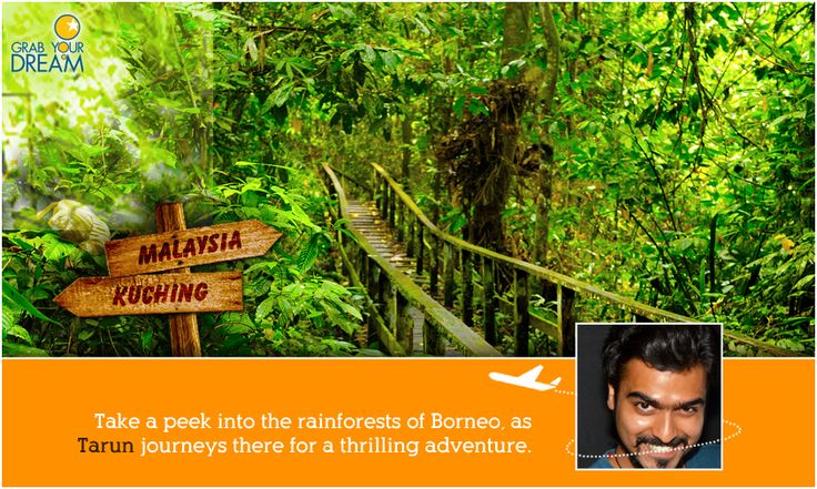 Home to endangered orang-utans, Tarun is off to experience the rarities of Borneo. Click here to see what he will be up to: http://cnk.com/gydborneo