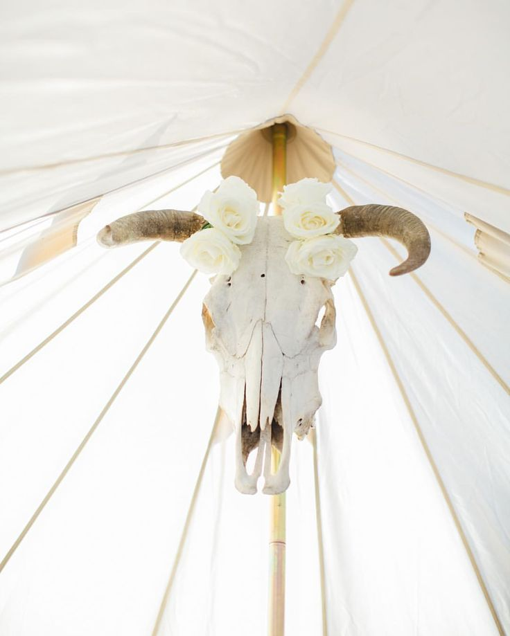 """94 Likes, 9 Comments - Wanderland Rentals and Venue (@wanderlandpopup) on Instagram: """"All in the details #skull #tent #boutiquetenting #glamping #bridalsuite #campout #weddingseason…"""""""