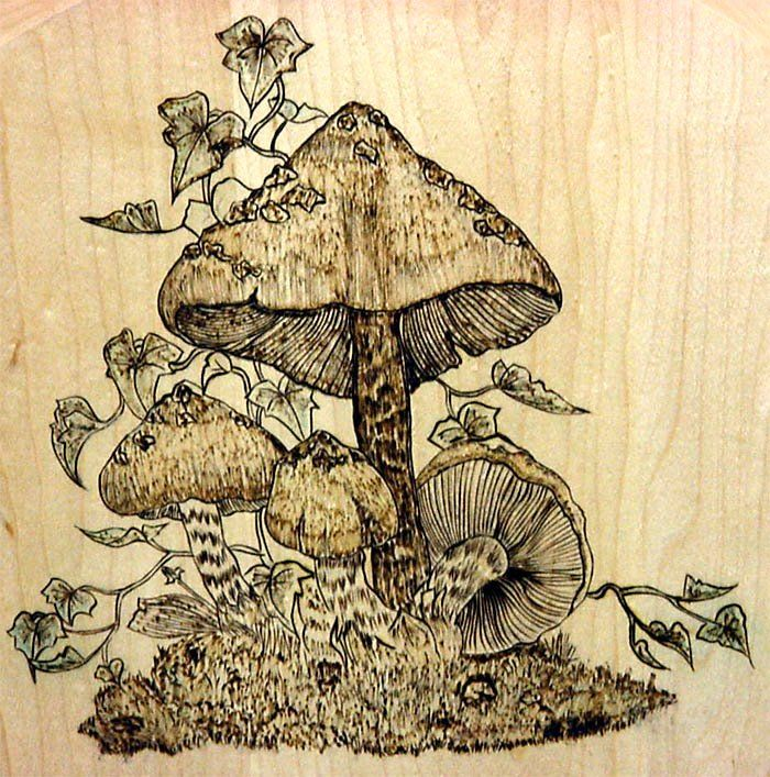 1000 Images About Pyrography On Pinterest Wood Burning