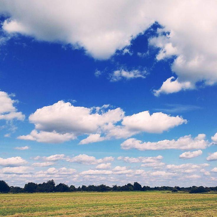 Sonntagsspaziergang . . . . .  #naturephoto #main_vision #landscape_captures #awesome_earthpix #natureaddict #rsa_rural #awesomeearth #nature_wizards #gottalove_a_ #allnatureshots #instanaturelover #earth_deluxe  #nature_brilliance #EarthVisuals #artofvisuals #welivetoexplore #natureaddict #naturediversity #ourplanetdaily #earth_deluxe #instanaturelover #nature_prefection #allnatureshots #meindeutschland #germanytrip #deutschland_greatshots #unlimitedgermany #germanytourism #germanytour…