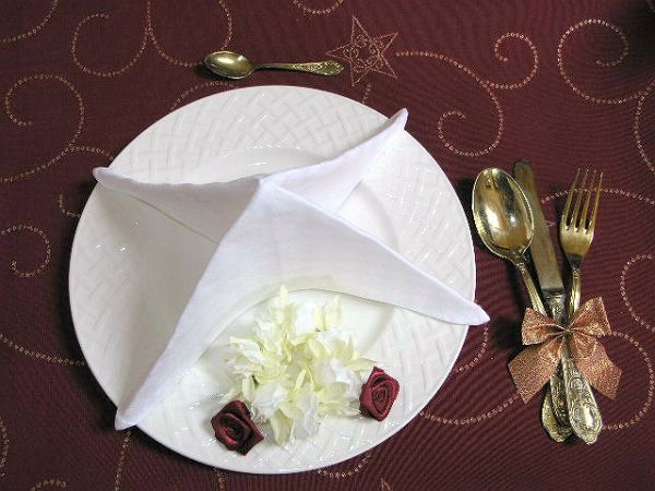 Použite buď kvalitné papierové, alebo DOBRE naškrobené látkové obrúsky. Krásne vynikne aj jednofareb...