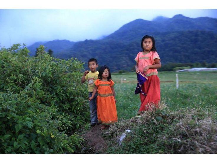 Niños ngäbe-buglés en Boquete, provincia de Chiriquí, al occidental de Panamá. Erick Marciscano | La Estrella de Panamá.