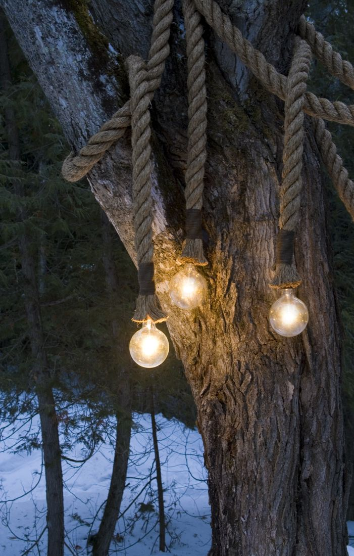 Outdoor rope lights just gorgeous