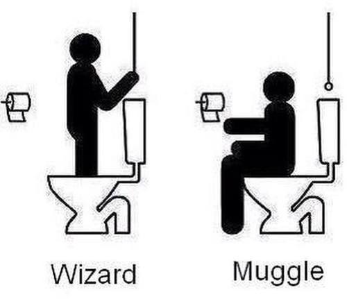 Wizard vs Muggle toilet use