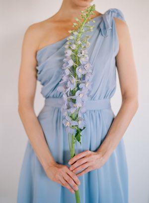 One large stem of delphinium for bridesmaid.