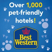 Key West, Florida Dog-Friendly City Guide..... Restaurants, attractions, etc. NOT JUST HOTELS