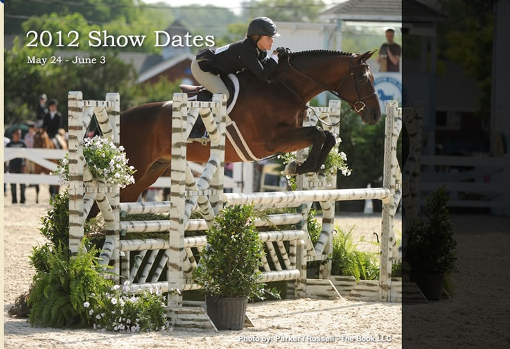 I would love to show here! Maybe in two years! lol: Devon Horses, Places I D, Photo Galleries