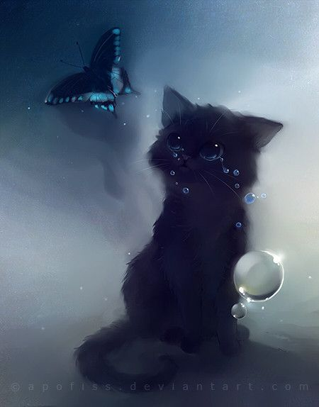 Chaton noir qui pleure... :'(                                                                                                                                                                                 Plus