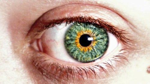 Wow, Almost like a pumpkin eye, oange and green