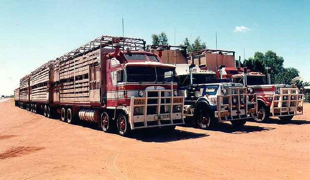 Tren de carretera, road trains in Australia