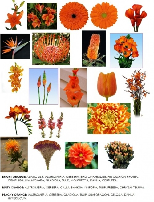 bouquet mariage orange