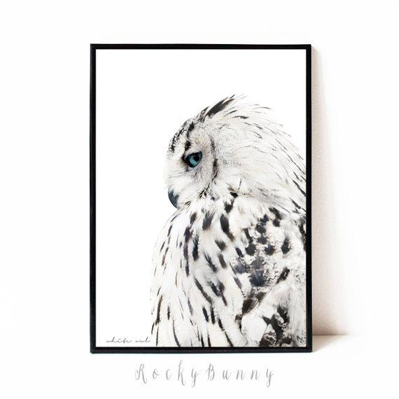 Blue /& Gray Home Decor Wall Art Bird Photo Print B/&W Matted Bedroom Picture