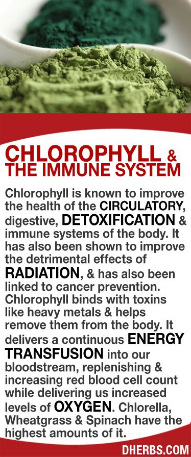 Chlorophyll, known to improve the health of the circulatory, digestive, detoxification & immune systems of the body. It has also been shown to improve the detrimental effects of radiation & is linked to cancer prevention. Chlorophyll binds with toxins like heavy metals & helps remove them from the body. It delivers a continuous energy transfusion into the bloodstream, increasing red blood cell count while increasing oxygen levels. Chlorella, Wheatgrass & Spinach have the highest amounts…