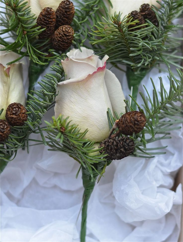 Wedding Bouquets For December : Pinecone and rose bouquet winter buttonhole of metalina