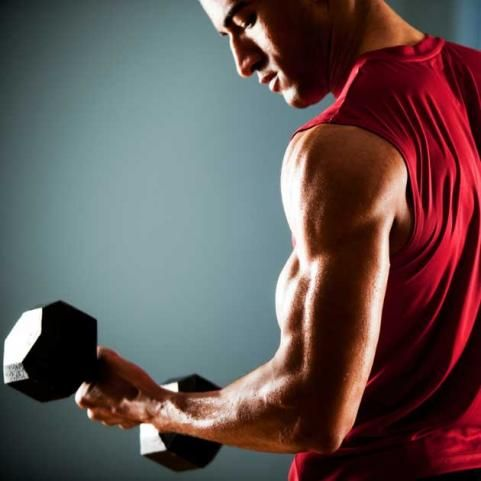 guy lifting weights working his biceps