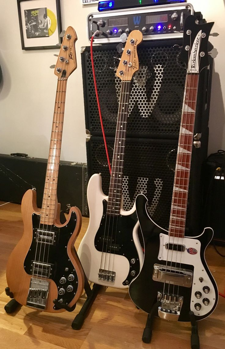 Why not add another great US Bass to the crowd Peavey T40  Fender precision  Rickenbacker 4003