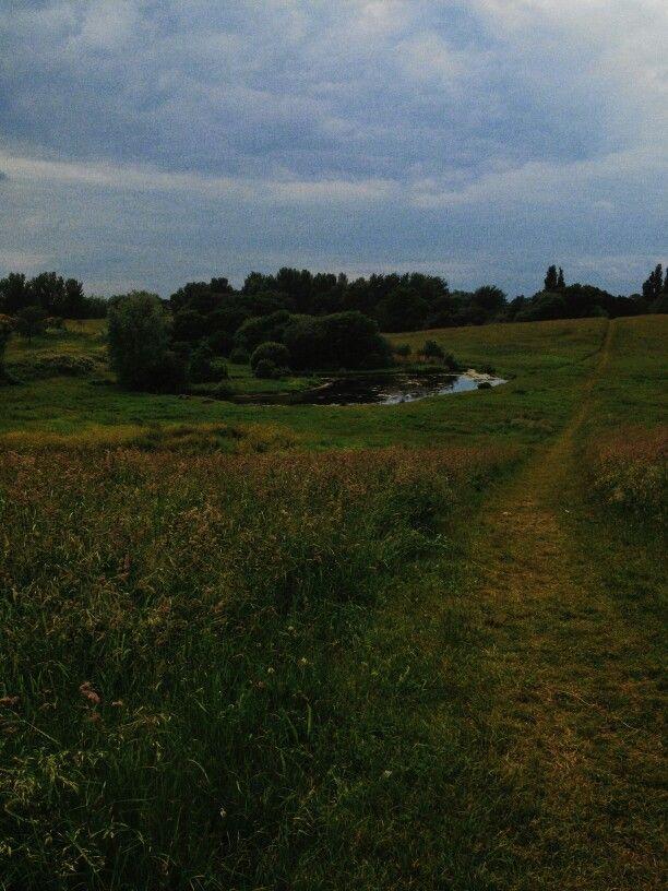 Lakes parks