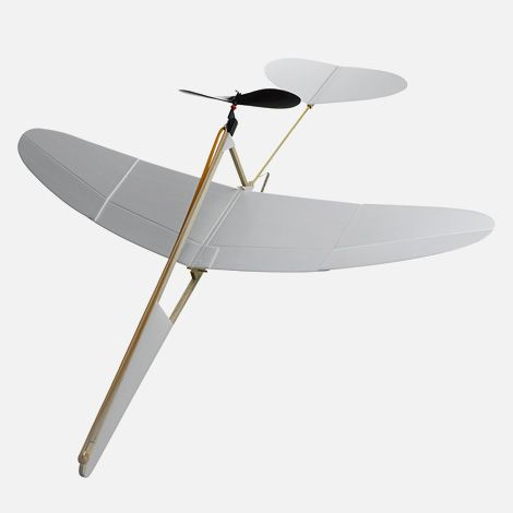 The Crow model airplane. I don't have a good link for this one. Anyone know where to buy one?