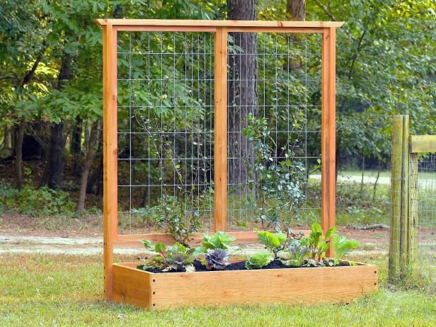 Make your own raised beds using basic lumber and hardware you may already have on hand. You can even create raised beds with attached trellises made from pieces of fencing to grow vining crops like climbing beans, cucumber or Malabar spinach. Line the bottom of the raised bed with hardware cloth if gophers or ground squirrels are problem pests in your region.