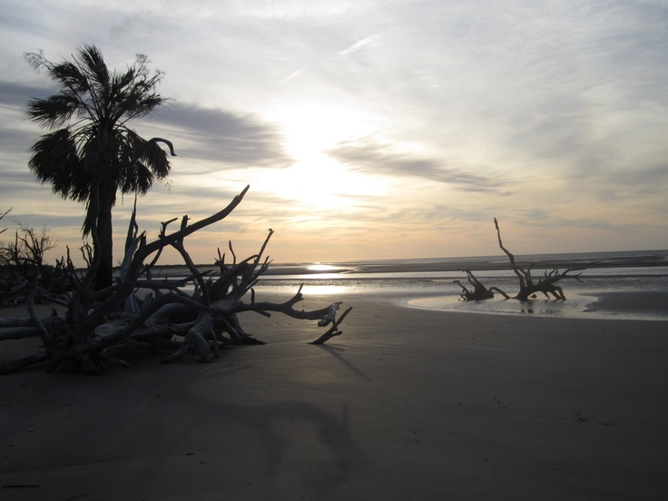 #Ossabaw Island (south beach sunrise) in Georgia US
