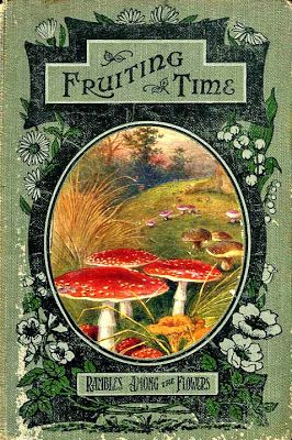 Fruiting Time: Rambles Among the Flowers 1920s