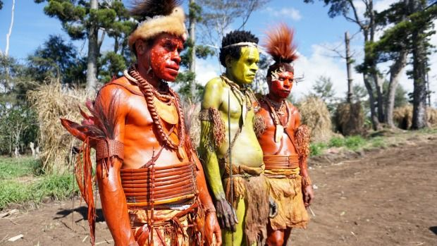 The Foi tribesmen of Papua New Guinea's Lake Kutubu region are renowned for their ability to extract the treasured oil of the kara'o tree.