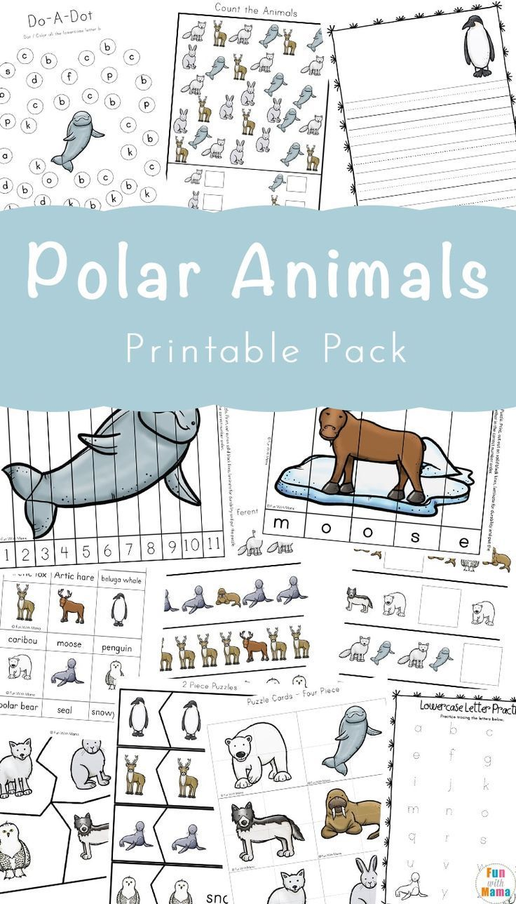 You Don't Want To Miss This Polar Animals Printable Pack