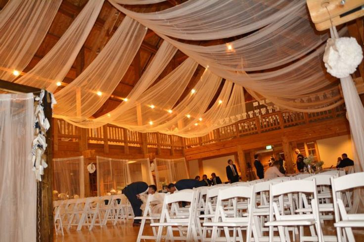 my wedding canopy.