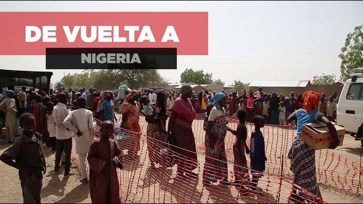 Desde mediados de mayo de 2017, los equipos de MSF han sido testigos de un abrupto incremento en el número de refugiados nigerianos que huyen de Camerún para escapar del conflicto. Los campos de los que están llegando no tienen la capacidad de hacer frente a esta gran afluencia de personas.  Quienes huyen de Camerún lo hacen sin saber que los espera una situación aún peor al otro lado de la frontera.