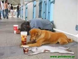 Πλησίστιος...: Η οικονομική κρίση σε 20 δευτερόλεπτα!!!!
