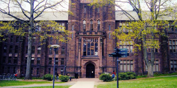 Mount Holyoke Finals Traditions: Moments Of Calm In The Storm